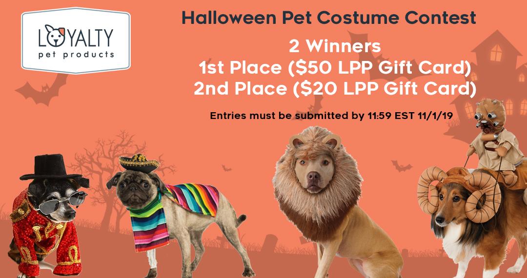 2019 Halloween Pet Costume Contest